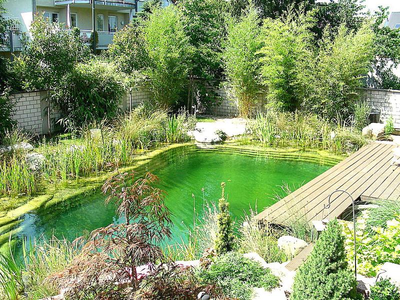 Bionova piscine italia laghetti balneabili for Bache piscine naturelle