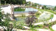 piscina naturale, biopiscina, laghetto balneabile